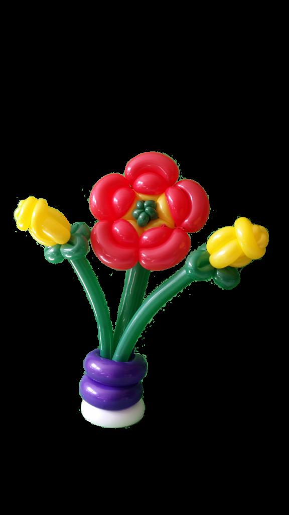 Ballonblume, Gelbe Rosen