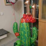 Kaktus zum 11. Geburtstag